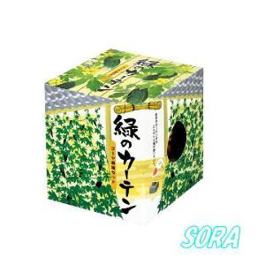 緑のカーテン ゴーヤ栽培セット(6個)|e-sora