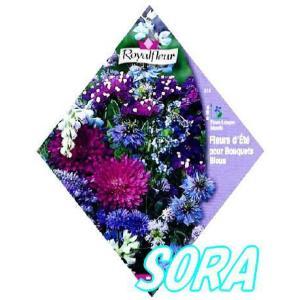 ロイヤルフルール パープルガーデンMIX e-sora