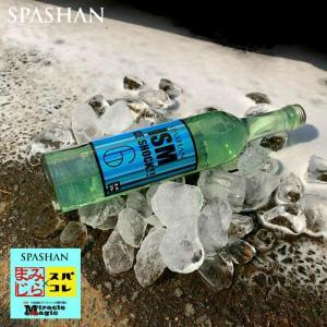 スパシャン SPASHAN ガラスコーティング 車 シャンプー 洗車 ガラスコーティング剤 SPASHAN スパシャン イズム アイスショック|e-sora