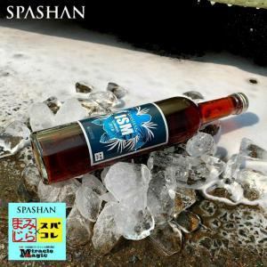 スパシャン SPASHAN ガラスコーティング 車 シャンプー 洗車 ガラスコーティング剤 カーシャンプー SPASHAN スパシャン イズム アイスショック サマー|e-sora