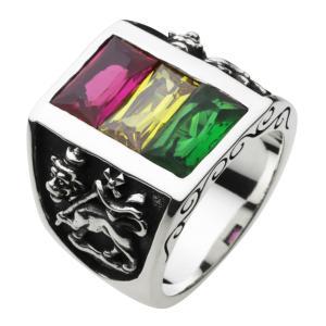 シルバーアクセサリー シルバーリング 指輪メンズ ラスタ グッドバイブレーション 指輪シルバー925リング|e-standard