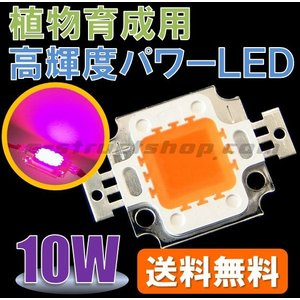 【送料無料】 植物 栽培 育成用 10W 高輝度 パワー LED 大型 チップ 素子 赤 青 発光|e-struct