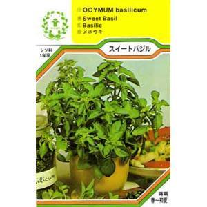 スイートバジル/ハーブ・西洋野菜の種 【ネコポス(メール便)可】 e-tisanes