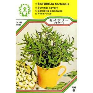 セイボリー サマー/ハーブ・西洋野菜の種 【ネコポス(メール便)可】 e-tisanes