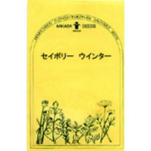 セイボリー ウインター/ハーブ・西洋野菜の種 【ネコポス(メール便)可】 e-tisanes