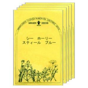 シー ホーリー スティールブルー/ワイルドフラワーの種 【ネコポス(メール便)可】 e-tisanes