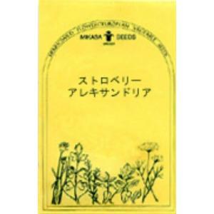 ストロベリー アレキサンドリア/ハーブ・西洋野菜の種 【ネコポス(メール便)可】 e-tisanes