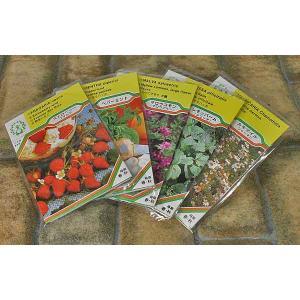 おいしいハーブティーの種 5種類 「ニースセット(オリジナル説明書付)」|e-tisanes