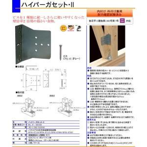1個〜 同梱OK  カネシン ハイパーガセットII 筋交い金物Z金物 HG-2|e-tool-shopping