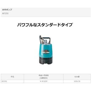 在庫限り!日立工機 100V 水中ポンプ AP250 60Hzハイコーキハイコーキハイコーキハイコーキ e-tool-shopping 02