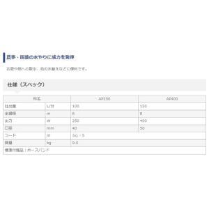 在庫限り!日立工機 100V 水中ポンプ AP250 60Hzハイコーキハイコーキハイコーキハイコーキ e-tool-shopping 03