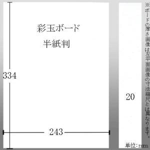 603614 彩玉ボード 半紙判厚さ20ミリ 242*332*20mm|e-unica