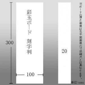603622 彩玉ボード 刻字判厚さ12ミリ 100*300*12mm|e-unica