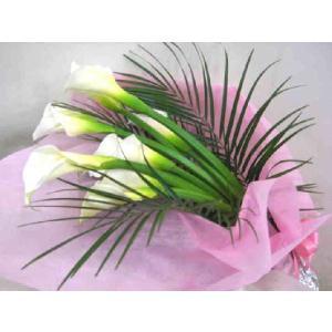カラー・純真の花束