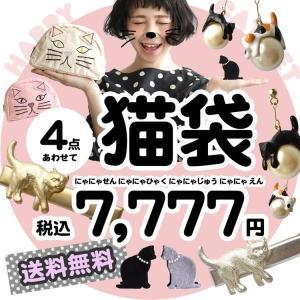 福袋 ポーチ アクセ ねこ 猫 キャット CAT アニマル 動物 雑貨 小物 ピアス アクセサリー ヘアアクセサリー セット プレゼント ギフト|e-zakkamania
