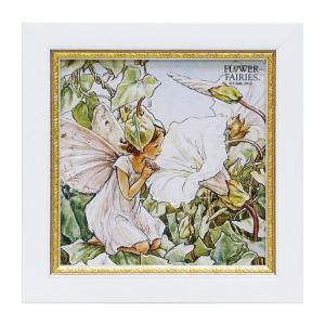 アート アートパネル 妖精 シシリーメアリーバーカー フラワーフェアリーズ ホワイトバインドウィードフェアリー 花 かわいい