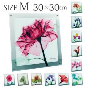 アートパネル x線 アートガラス 壁掛け X-RAY Glass Art ガラスアート Mサイズ|e-zakkaya