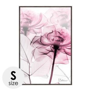 アートパネル 花 薔薇 ばら バラ アートフレーム モダン 額入り X RAY キャンバスアート ピンクローズ Sサイズ