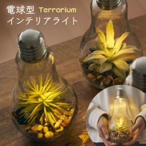 電球型インテリアライト Terrarium テラリ…