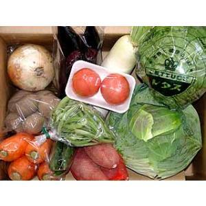 九州産・豊の国旬の野菜詰め合わせお試しセット 8品目以上[送料無料 一部地域を除く]|e298com