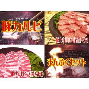 大分県産○豚カルビまんぷく焼肉セット[合計1Kg]★ビタミン...