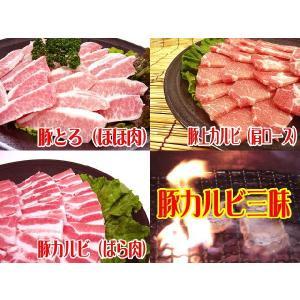 大分県産○豚カルビ三昧焼肉セット[合計1Kg]★ビタミン豊富...