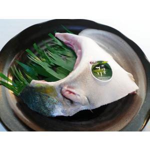かぼすブリカマ[1切] 大分県臼杵産(養殖)