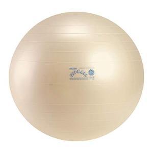 ギムニクフィットボール55【バランスボールフィット55】|ea-s-t-store
