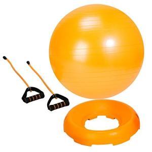 ALINCO(アルインコ) バランスボール 55cm (固定台、チューブセット) エアーポンプ付 E...