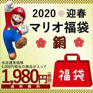 福袋2020 マリオ福袋 銅(7点入り)