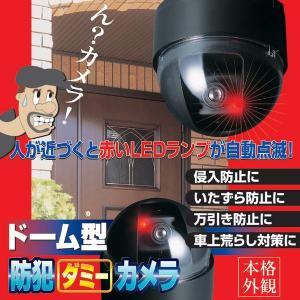 返品可 レビューで次回2000円オフ 直送 ドーム型防犯ダミーカメラ CDSセンサー/LEDランプ付き (防犯対策) AV・デジモノ カメラ・デジタルカメラ ダミーカメラ|eagleeyeshopping