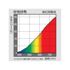 パナソニック 街灯用電球 E26口金 65ミリ径 100形 クリア G100W/D|eagleeyeshopping|02