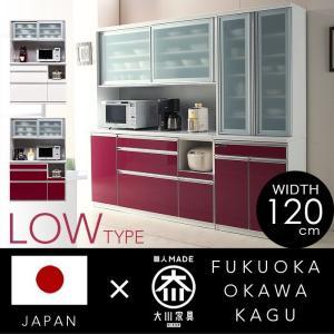 日本製 食器棚 レイナ オープンボード 120OP L  キッチン eagleshop