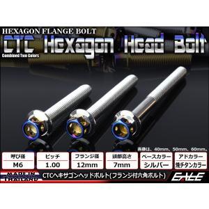 ヘキサゴンヘッドボルト CTC フランジ付六角ボルト M6×12mm ステンレス シルバー/焼チタンカラー|eale