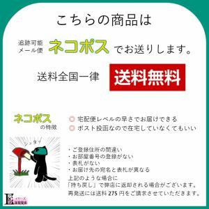ステンレス サックス リガチャー スクリュー IPゴールド 1本売り イヤーズ オリジナル 日本製|earrs|04