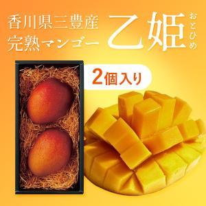 国産 完熟マンゴー 2020年 乙姫(おとひめ) 2個入り 香川県三豊産 アンファーム|earth-shop