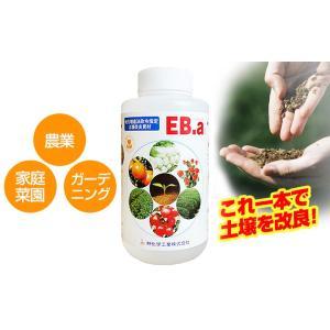 土壌改良材 EB-a (イービーエー) 1リットル 液肥 林化学工業 earth-shop