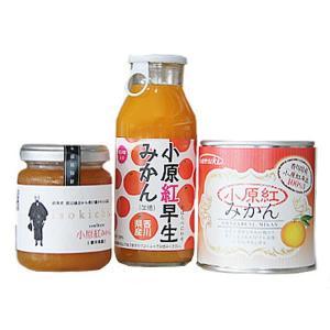 香川県産小原紅みかんギフトセット 3点セット 讃岐罐詰株式会社 earth-shop