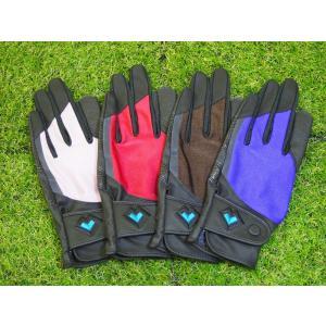 レガン グラウンドゴルフ用手袋 磁石付き高機能モデル 婦人用 両手組 メール便|earth-shop