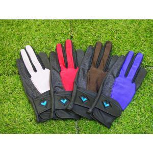 レガン グラウンドゴルフ用手袋 スタンダードモデル 婦人用 両手組 メール便|earth-shop