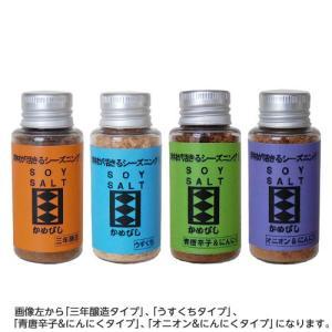 かめびし醤油 ソイソルト(粉しょうゆ、粉末醤油) 25g ミニクリア ボトル入り|earth-shop