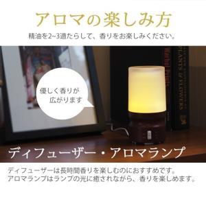 ラベンダー 10ml [精油/エッセンシャルオイル/アロマオイル]|ease-aroma|06