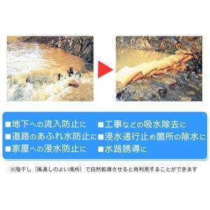 土のう アクアブロック 10枚 【 土不要 干せば再利用 】 防災・水害対策|ease-style|02
