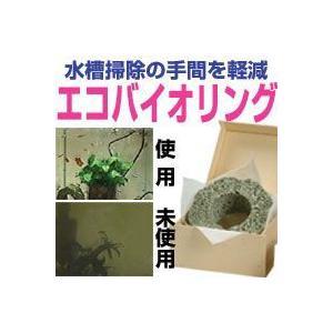 エコバイオリング ☆★超お買得セール★☆|ease-style