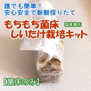 しいたけ栽培キット もちもち菌床椎茸 【菌床のみ】 ご家庭で椎茸栽培 誰でも簡単 安心安全で新鮮 インドアファーム|ease-style