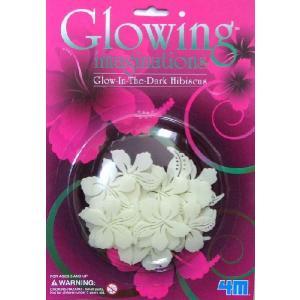 Glow In The Dark Hibiscus(蓄光プレート) 3セット|eastwave