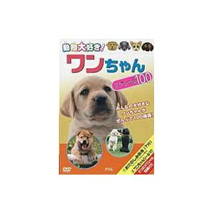 動物大好き  ワンちゃんスペシャル100  DVD