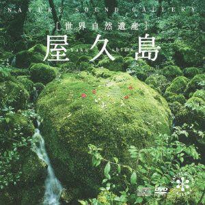 /屋久島(DVD付)