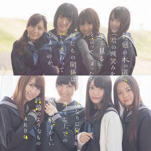 AKB48/鈴懸の木の道で「君の微笑みを夢に見る」と言ってし...