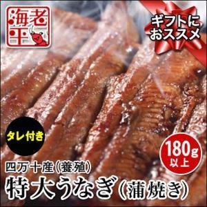 四万十うなぎ蒲焼 (特大・有頭・タレ付)約200g│国産鰻 ウナギ|ebihira55